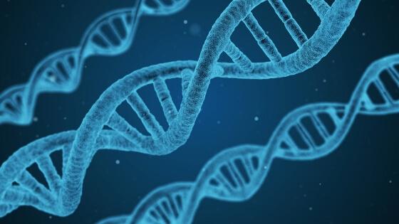 Biyoloji Tarihi
