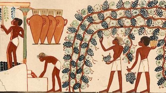 Antik Çağ'da Şarap Üretimi