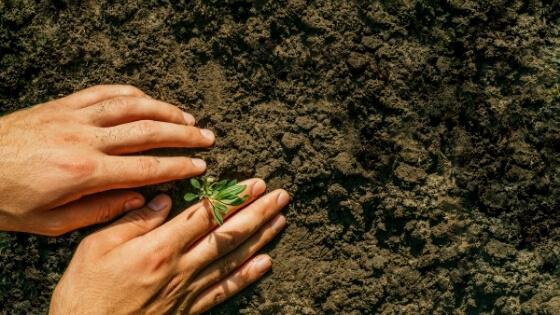 Toprak Mahsulleri Vergisi Amacı ve Özellikleri